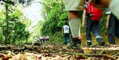 Relatório aponta melhores regiões para investir em turismo no Estado   Portal Timbó Net