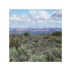 Stunning Utah desert and blue sky Canvas Print