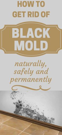 How To Get Rid Of Black Mold Naturally, Safely and Permanently