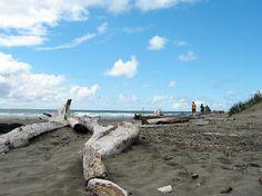 4. Favorite Childhood Memory ~ Ocean Shores - #Windows8KidsCorner #Windows8XHTC