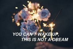 You're part of a machine/you are not a human being//Halsey