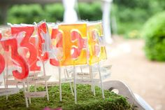 lollipop seating cards  Photography by alecialaurenphotography.com