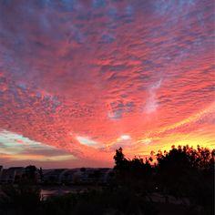 18.11.16 El Gouna