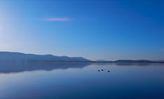 silence lake constance   ich wünsche euch allen einen schönen entspannenden Abend ;) darf sehr gerne geteilt werden ich danke euch allen   Nikon L820  Belichtung 1/1000sek. Blende F/6.9 Brennweite 7mmsilence by Marc Kunze on 500px