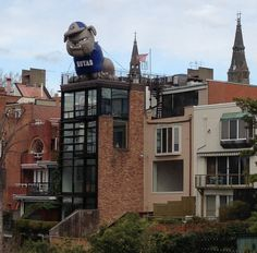 The giant inflatable bulldog mascot in Georgetown