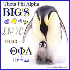 Sorority Quotes Collection by Sorority Perfume: Theta Phi Alpha BIG'S Love their ΘΦΑ littles #SororityPerfume www.sororityperfume.com