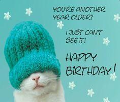 Birthday Wishes Birthday quotes : Birthday Messages And Birthday Images Happy Birthday Meme, Birthday Posts, Happy Birthday Pictures, Happy Birthday Messages, Happy Birthday Greetings, Friend Birthday, Humor Birthday, Happy Birthday With Cats, Cat Birthday Wishes