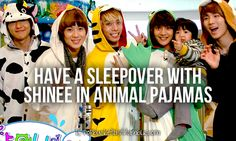 have a SLEEPOVER with SHINEE omfg...  And the Pajamas are called Kigurumi.! -_- MOFO.!