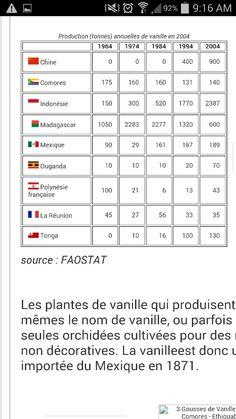 Pays Producteurs Vanille