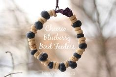 Homemade bird feeders - happy hooligans - cheerios and blueberries