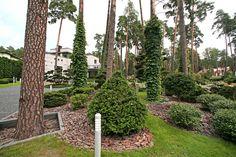 """Фирменный «почерк» ARCADIA GARDEN выражается в разноплановости стилевых решений каждого проекта сада. Такой подход к ландшафтному дизайну позволяет учесть весь комплекс факторов, определяющих """"дух места"""": природные условия, особенности рельефа, стиль архитектуры, окружение и пожелания заказчиков. Arch, Outdoor Structures, Garden, House, Longbow, Garten, Home, Lawn And Garden, Gardens"""