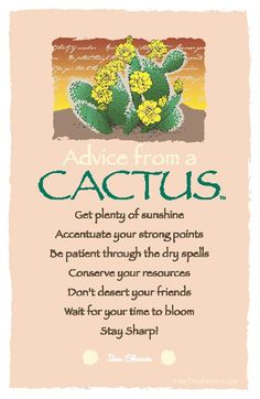ADVICE FROM A CACTUS: *Get plenty of sunshine *Accentuate your strong points *Be patient through the dry spells *Conserve your resources *Don't desert your friends *Wait for your time to bloom *Stay sharp but sweet! Advice Quotes, Me Quotes, Peace Quotes, Advice Cards, Bible Quotes, Cactus Quotes, Reiki, True Nature, Nature Quotes