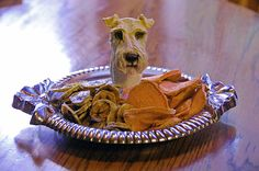 Dehydrated Sweet Potato and Banana chips for your favorite poochies