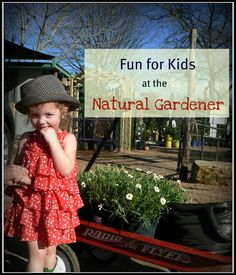 Free Fun in Austin: Fun for Kids at The Natural Gardener Austin With Kids, Stuff To Do, Things To Do, Free Activities, Family Activities, South Texas, Free Fun, Girls Weekend, Summer Fun