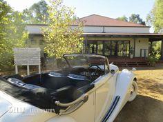 A Jaguar Mk5 convertible on a Swan Valley wine tour at Faber Vineyard last weekend http://www.belle.net.au/swan-valley-wine-tours/