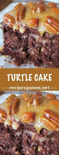 Chocolate Turtle Cake Recipe Desserts ♛BOUTIQUE CHIC♛