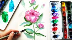 Easy Watercolor Peonies Painting Tutorial - How to Paint Flowers Watercolor floral painting for beginners. Easy Watercolor, Watercolor Paper, Watercolor Flowers, Watercolor Paintings, Peony Painting, Paint Flowers, Plant Art, Painting Tutorials, Watercolor Illustration