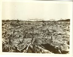 Trench field.