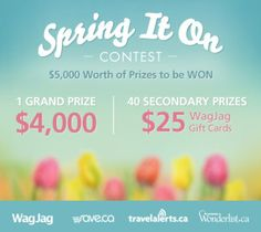 Amazing Wagjag Contest!! Non Referral But AMAZING PRIZES #Wagjag | Coupon Nannie