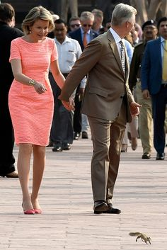 State visit of King Philippe and Queen Mathilde to the Republic of India. Queem Mathilde spotted a squirrel ran in front of them.