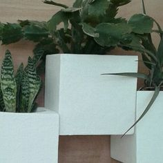 Keep you vertical garden indoor with this wall planters,add a touch of nature to your wall