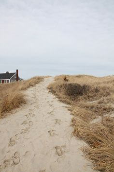 Looks like the Hamptons in the winter