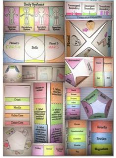 Learning Lab Resources: 50% off for 500 Ratings! - Science Interactive Notebook Templates