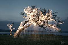 Le photographe Vitor Schietti capture en pose longue et light painting des photographies d'arbres entourés de feu et d'étincelles qui évoquent la légende du buisson ardent.
