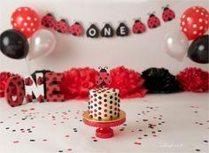 1st Birthday Themes Girl, 1st Birthday Photoshoot, First Birthday Decorations, Minnie Birthday, Baby 1st Birthday, First Birthday Parties, Frozen Birthday, Birthday Ideas, Ladybug 1st Birthdays