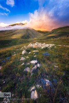 Kindred Spirit by fran4life  Castelluccio Francesco Di Vito Italy beautiful blue clouds color flower flowers fog fran4life grass