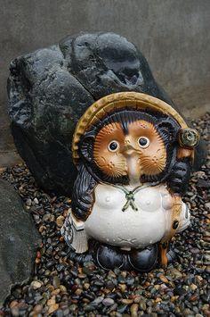 Tanuki - 狸