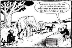 Principios de evaluación y medición educativa.: Para reflexionar...