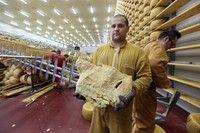 Parmesan cheese  foto di Paolo Righi, Meridiana Immagini  http://www.regione.emilia-romagna.it/terremoto/sei-mesi-dal-sisma/foto