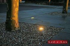 Een mooie toepassing van de Blockspot. Met dit armatuur worden deze bomen prachtig verlicht zodra de zon onder gaat. Sidewalk, Lighting, Home Decor, Decoration Home, Room Decor, Side Walkway, Walkway, Lights, Home Interior Design