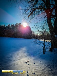 Winter im Frankenwald Celestial, Sunset, Outdoor, Hiking, Outdoors, Sunsets, Outdoor Games, The Great Outdoors, The Sunset