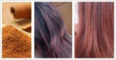Canela: una especia que le dará un toque especial a su cabello - e-Consejos