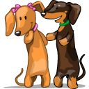 DailyDoxie is a source for free daily dachshund photos, dachshund resources, and more.
