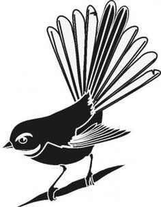 fantail nz bird free download printable - Google Search