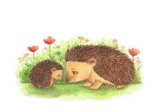 Nursery Art, Hedgehog Art, Hoggy and Mummy Secret print from an original watercolor illustration by Irene Owens Baby Hedgehog, Hedgehog Art, Hedgehog Illustration, Watercolor Illustration, Cute Animal Drawings, Cute Drawings, Llama Drawing, Baby Porcupine, Hedgehog Colors