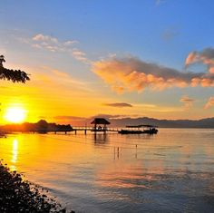 Urgent: Fiji House Sitter Needed for BayviewCottage | TrustedHousesitters.com