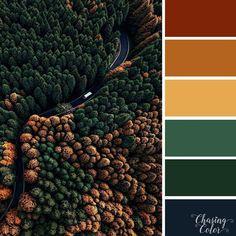 ideas nature forest trees colour for 2019 Bedroom Colour Palette, Green Colour Palette, Autumn Color Palette, Warm Color Palettes, Green Pallete, Colour Schemes, Color Combos, Warm Colors, Colours