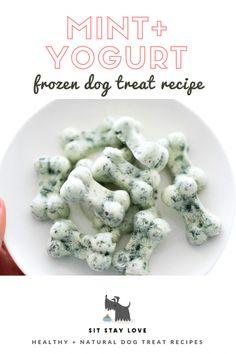 Dog Training Chewing Frozen mint and yogurt dog treats in a dog bone shape.Dog Training Chewing Frozen mint and yogurt dog treats in a dog bone shape Puppy Treats, Diy Dog Treats, Homemade Dog Treats, Healthy Dog Treats, Dog Biscuit Recipes, Dog Treat Recipes, Dog Food Recipes, Dog Biscuit Recipe Grain Free, Frozen Dog Treats