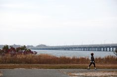 Howard Beach is situated along Jamaica Bay, roughly between the Brooklyn border and John F. Kennedy International Airport, and connected to . Howard Beach, Residential Real Estate, International Airport, Small Towns, Jamaica, Brooklyn, The Neighbourhood, City, Negril Jamaica