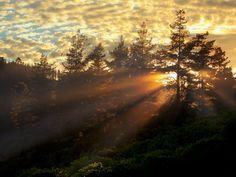 Photograph Knysna Sunrise by Mario Moreno on Sunrise Tumblr, Natural Salt, Knysna, Vader Star Wars, Far Away, Beautiful Gardens, The Dreamers, South Africa, Mario