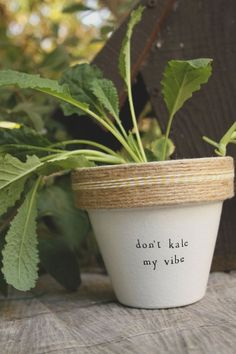 Don't Kale My Vibe by PlantPuns on Etsy