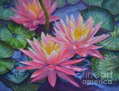 Water Lilies 1 Print By Fiona Craig (from an original watercolor painting). See also www.fionacraig.com