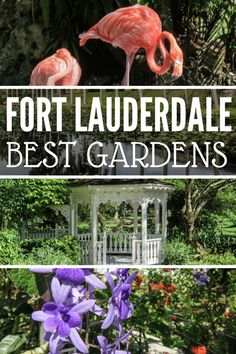 Discover the 18 top things to do in Fort Lauderdale with our comprehensive guide to all the Fort Lauderdale attractions and Fort Lauderdale tours. Usa Travel Guide, Travel Usa, Travel Tips, Travel Stuff, Travel Goals, Travel Ideas, Fort Lauderdale Attractions, Florida Fort Lauderdale, Fort Lauderdale Things To Do
