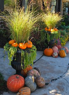 Container gardening creates design possibilities for every season There's more to container gardening than just thriller filler and spiller. The post Container gardening creates design possibilities for every season appeared first on Garten. Winter Container Gardening, Fall Container Plants, Garden Container, Container Flowers, Fall Window Boxes, Fall Containers, Succulent Containers, Fall Planters, Fall Potted Plants