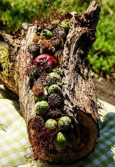 Blumenfrauen: Aus Brennholz wird Dekoration - Tutorial