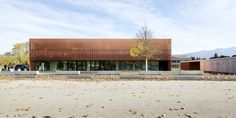 Image 8 of 23 from gallery of Sports Hall St. Martin / Dietger Wissounig Architekten. Photograph by Paul Ott
